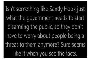 (Text from conspiracy website about Sandy Hook)